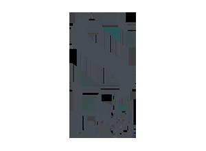 semi di lino logo